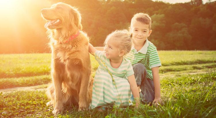 835a284254d Uuring: koera hammustuste ennetamine lasteaialaste seas